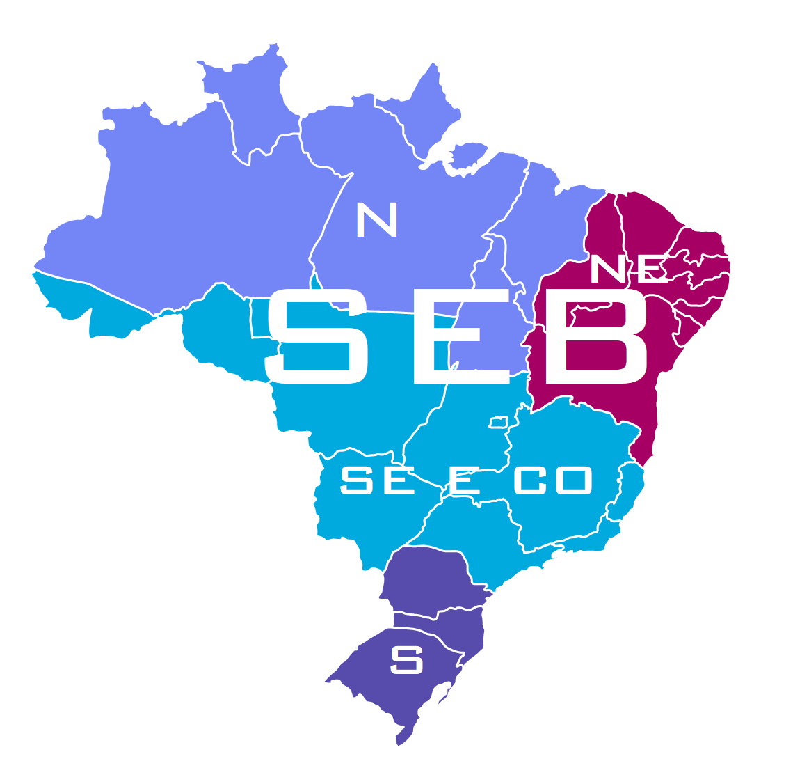 O Setor Elétrico Brasileiro